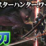 【MHW】最強太刀天天 最大火力ver 達人珠verの天天テンプレ装備!